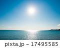 海 17495585