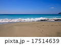 ビーチ 17514639