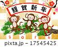 申年 申 猿のイラスト 17545425