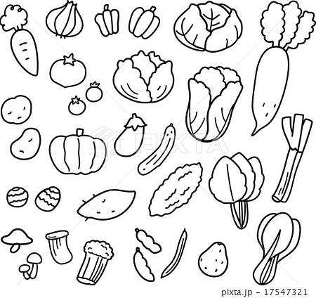 いろいろな野菜線画のイラスト素材 17547321 Pixta