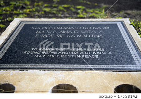 AFUPUA'A OF KAPAA ヘイアウ-1 17558142