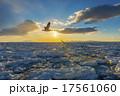 流氷 朝日 朝焼けの写真 17561060