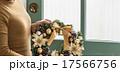クリスマスシーズン 17566756