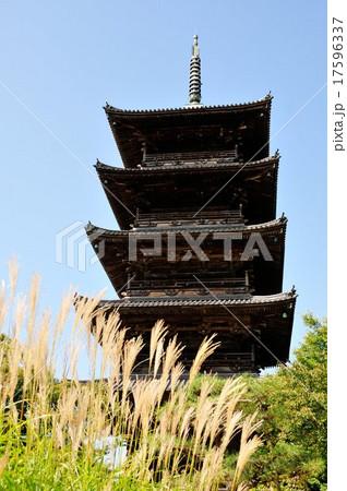 五重塔とススキ(岡山県総社市) 17596337