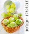 brussel cabbage 17605013