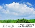 青空と白い雲 17618537