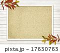 枠 フレーム コルクボードのイラスト 17630763