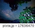 沖縄 さがりばな 天の川 17636470