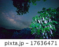 沖縄 さがりばな 天の川 17636471
