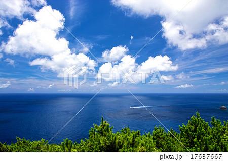 座間味島 17637667