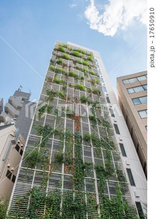 壁面緑化した高層ビルの写真素材 [17650910] - PIXTA