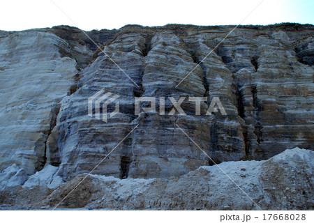 白ママ断層 17668028