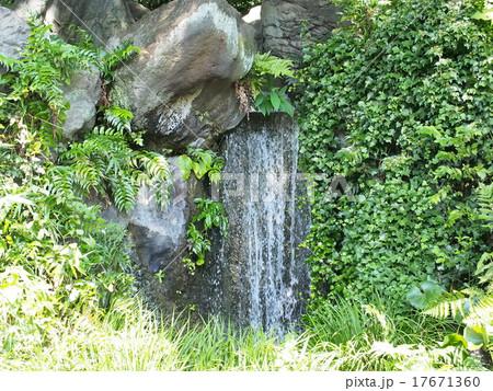 東京 皇居 東御苑 二の丸庭園の滝 17671360
