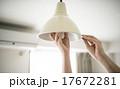 電球 17672281