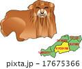 地図の動物 広島 ライオン 17675366