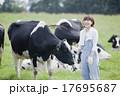 牧場で働く女性 17695687