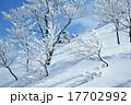雪山 自然 山の写真 17702992