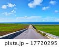 海が見えるサトウキビ畑と農道と青空 17720295