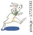 マラソンするウサギ 17725382