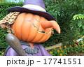 ハロウィン 街の装飾 かぼちゃ ランタン 魔女 魔法使い  17741551