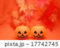 ハロウィンの飾り 17742745