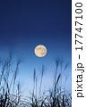 月 満月 ススキの写真 17747100