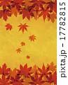 紅葉したモミジの背景画像 17782815