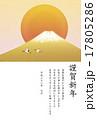 幻の富士山と鶴 謹賀新年  (平成28年度)  17805286