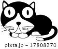 ギョロ目のクロネコ 17808270