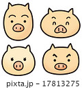 豚の顔 17813275
