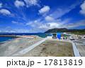 新島港風景 17813819