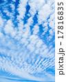 雲 青空 青色の写真 17816835