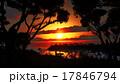 湖 夕方 夕のイラスト 17846794