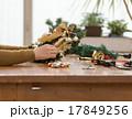 クリスマスシーズン 17849256