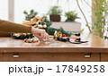 クリスマスシーズン 17849258