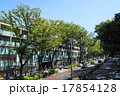 9月都市の風景855表参道 17854128