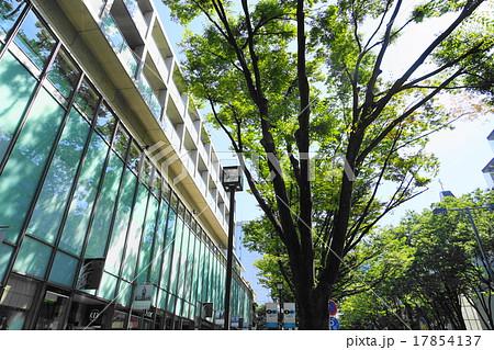 9月都市の風景864表参道ヒルズ 17854137