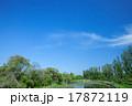 新緑 春 公園の写真 17872119