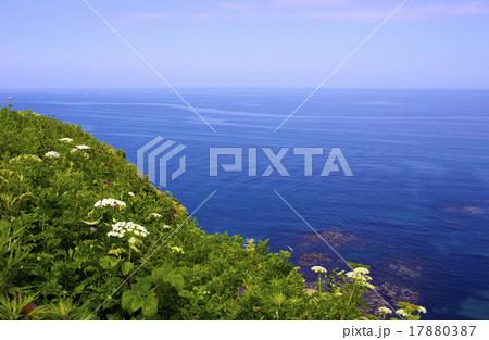 知床の海 17880387