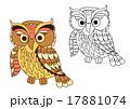 Cartoon owl bird in pastel colors 17881074