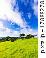 草原、緑、風景。沖縄、日本。 17888278