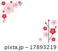花イメージ_梅桃2角コーナー 17893219