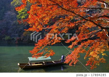 嵐山の紅葉 17894285