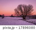 景色 風景 ウィンターの写真 17896080