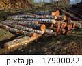 伐採 森林伐採 積み重ねの写真 17900022