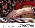 琴を奏でる手 17907790