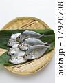 ゼンメ(ヒイラギ) 17920708