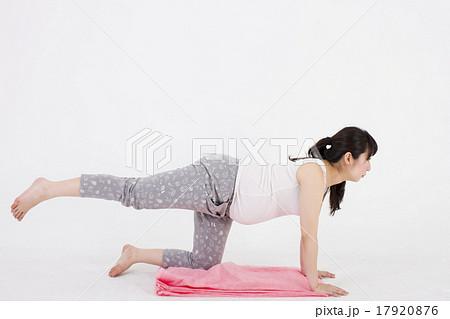 白い背景で床に四つん這いになって足上げエクササイズをする妊婦 17920876
