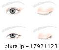 一重瞼と二重瞼 17921123