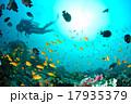 海 水中写真 スキューバダイビングの写真 17935379